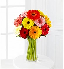 Flower Bouquets: Colorful World Gerbera Daisy Bouquet